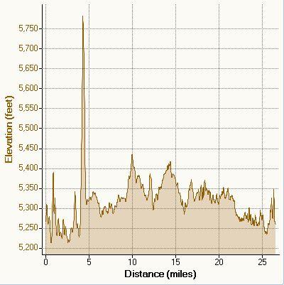 denvermarathon3.jpg